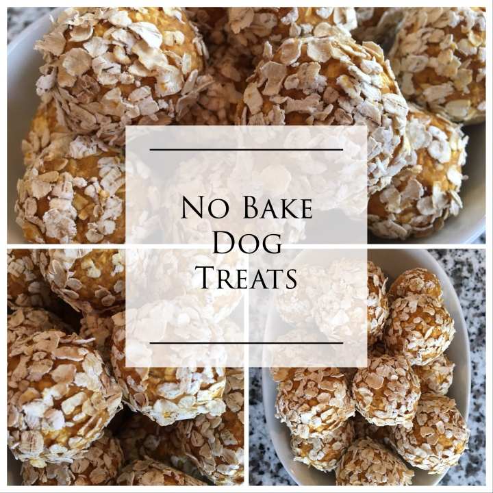 Homemade Dog Treats – No Bake PB Pumpkin Balls